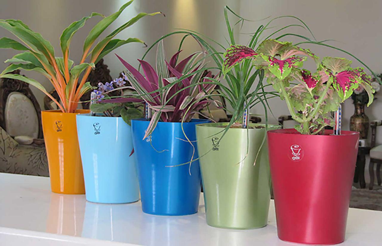فروش گلدان پلاستیکی
