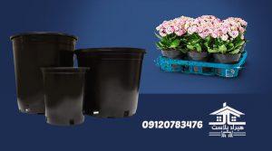 قیمت گلدان پلاستیکی گلخانه